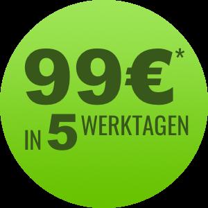 Angebot E-Mail Vorlage für 99€